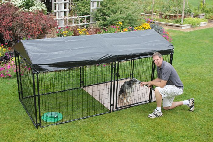 10 X 20 Ultimate 4 Tall Dog Kennel